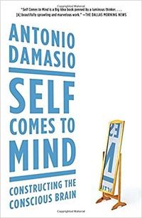 Книга: Так начинается «я». Мозг и возникновение сознания